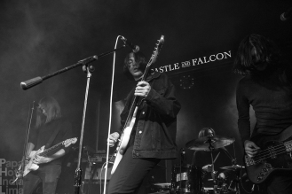 Violets_Castle_And_Falcon_Birmingham_02071800004