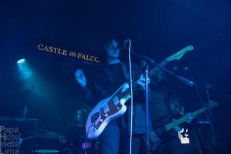 Violets_Castle_And_Falcon_Birmingham_02071800005